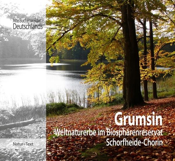 Grumsin - Weltnaturerbe im Biosphärenreservat Schorfheide-Chorin
