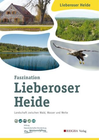 Faszination Lieberoser Heide