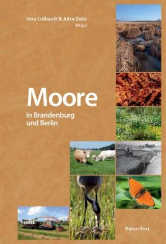 Moore in Brandenburg und Berlin